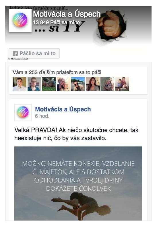 Facebook Page Box - náhľad výzoru